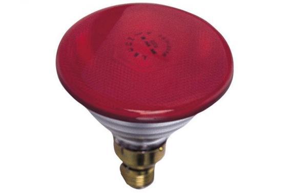 Lampada Colorata 80W - Lampade e Spot