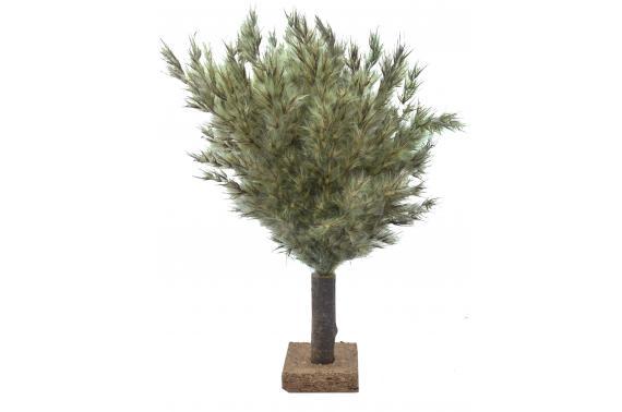 Cespuglio con tronco - Alberi