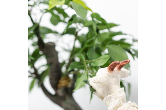 Capra in movimento (albero) - Artigianato in Movimento