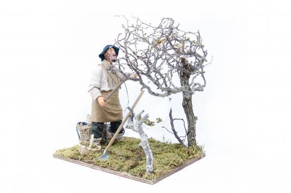 Raccoglitore di Olive - Movimento - 24 cm