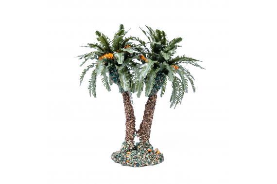 Palma Doppia - Alberi