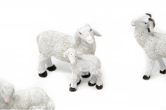 Set 6 pecore resina decorata - Animali Presepe in Resina