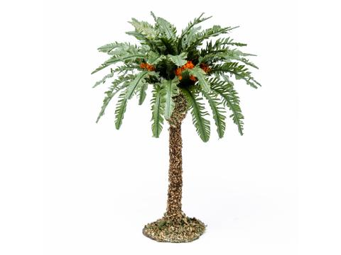 Palma Singola - Alberi