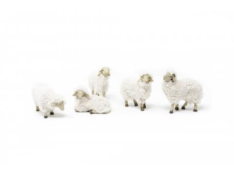 Set 6 pecore con lana - Animali Piumati